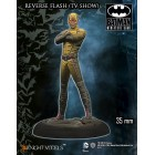 Batman - Reverse Flash TV Show