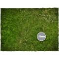 Terrain Mat PVC - Grass - 120x120 2