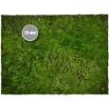 Terrain Mat PVC - Grass - 90x90 1