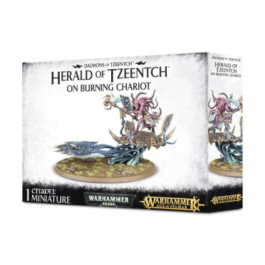 Age of Sigmar : Chaos - Deamons of Tzeentch Herald on Burning Chariot