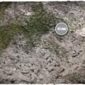 Terrain Mat Mousepad - Medieval Ruins - 90x90 1