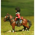 British Cavalry 1800-13: Heavy Cavalry in Bicorne 0