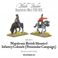 Mounted Napoleonic British Infantry Colonels (Peninsular War) 2
