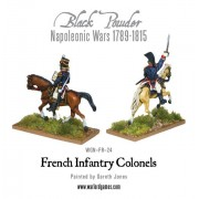 Mounted Napoleonic French Infantry Colonels