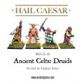 Ancient Celts: Druids 0