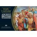 Ancient British Warriors 0