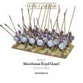 Hail Caesar - Macedonians: Royal Guard 0