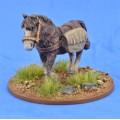 Saga - Civils et bétails - Poney 2 0
