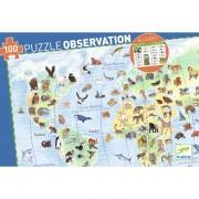 Puzzle Observation - Les animaux du monde - 100 pièces
