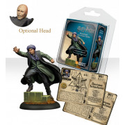 Harry Potter, Miniatures Adventure Game: Quirrell