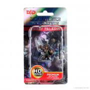 D&D Icons of the Realms Premium Figures - Dwarf Paladin Female