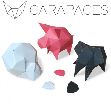 Carapaces By Doug : Anthracite