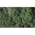 Woodland Scenics - Fine-Leaf Foliage Dark Green 1