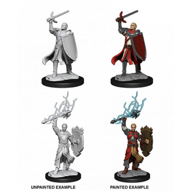 D&D Nolzur's Marvelous Unpainted Miniatures: Half-Elf Paladin Male