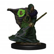 D&D Icons Elf Druid Male