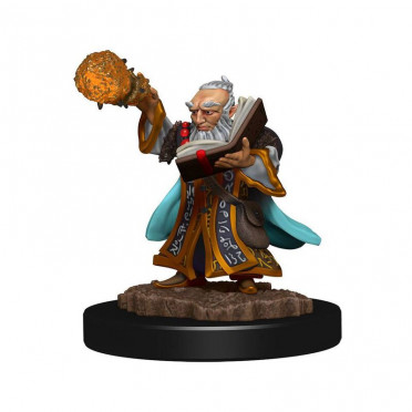 D&D Icons Gnome Wizard Male