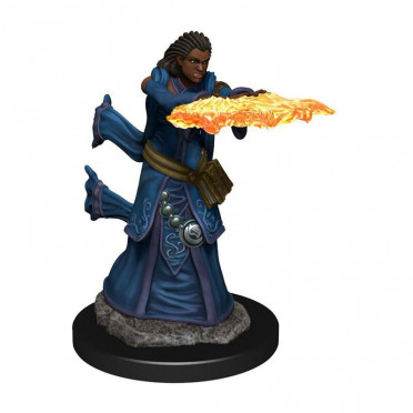 D&D Icons Human Wizard Female