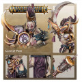 Age of Sigmar : Hedonites of Slaanesh - Lord of Pain 0